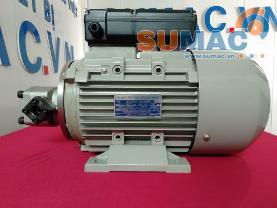 bom-thuy-luc-lien-dong-co-hydraulic-pump