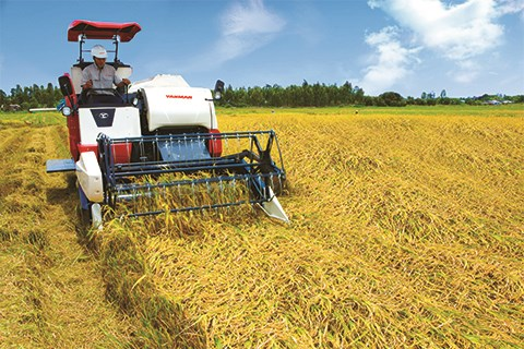Phân tích máy gặt liên hợp