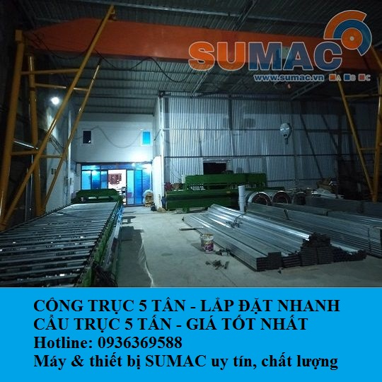 cong-truc-5-tan-12m-crane-systems
