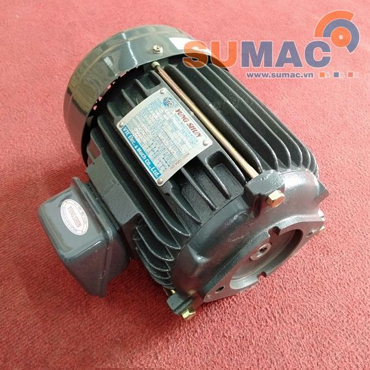 dong-co-dien-cot-am-electric-motor